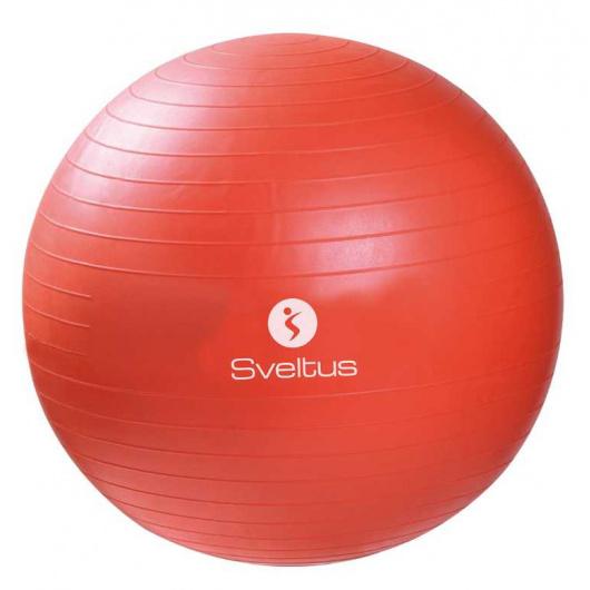 17193-gynmball55cm-sveltus-orange